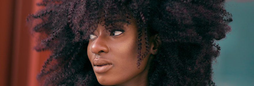 Perruque style afro