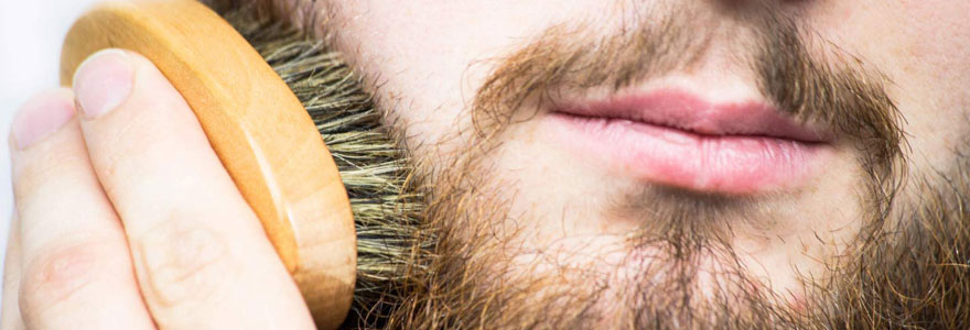 Brosse pour barbes